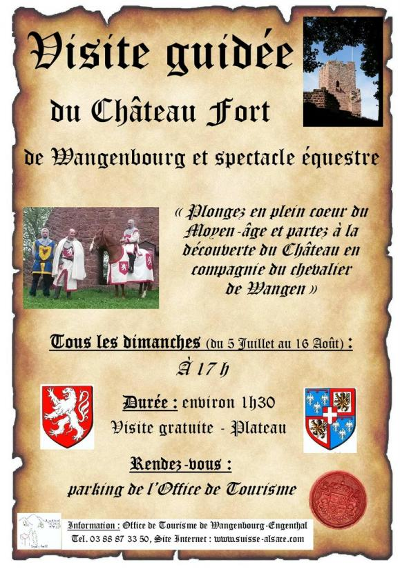 06 30 vg chateau spectacle equestre