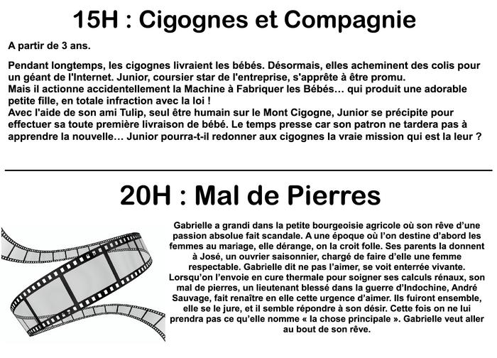 2017 01 05 cinema wasselonne films janvier 2017