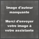 Boulette0109