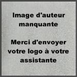 REIKI-Energie-dAmour-by-Nathalie